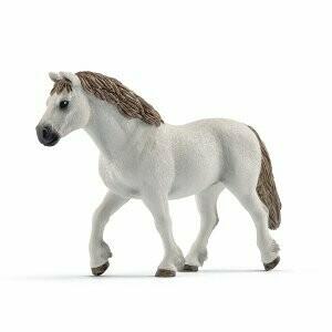 Pony-Welsh jument