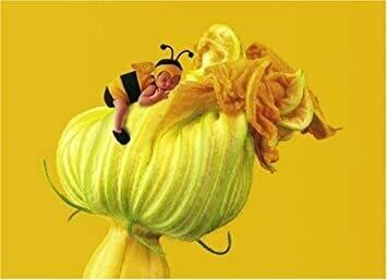 Anne Geddes l'abeille et la fleur de citrouille puzzle 1000 pièces