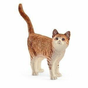 Chat roux tigré