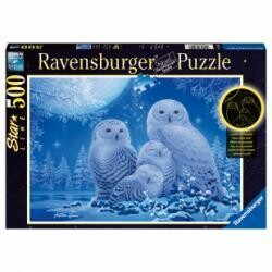Puzzle chouettes au clair de lune 500 pièces lumineux la nuit!