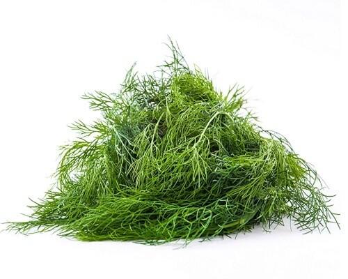 Укроп свежий, органический, Ферма М2, 50г