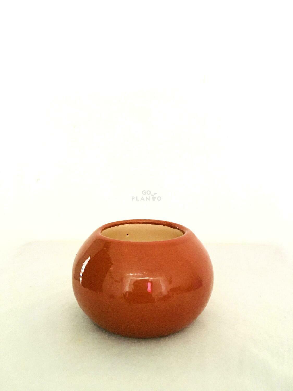 Round Succulent Ceramic Pots