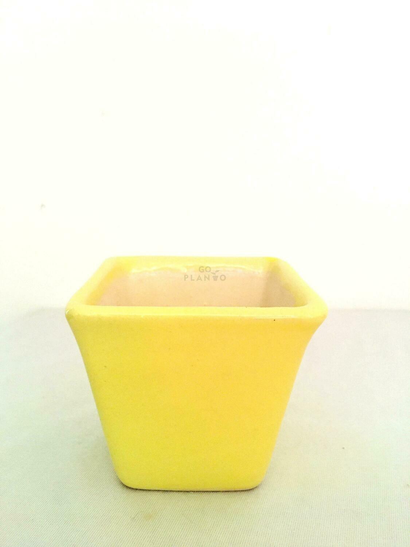 Square Succulent Ceramic Pot
