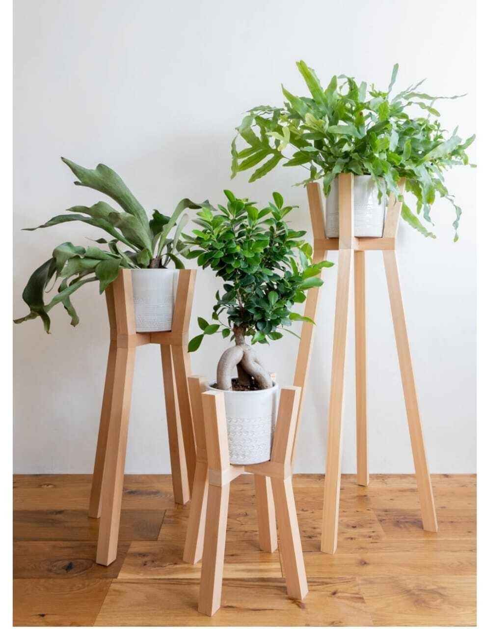 Wooden Stand for Plants/Planter for Home Garden Decoration in Beige- Set of 3