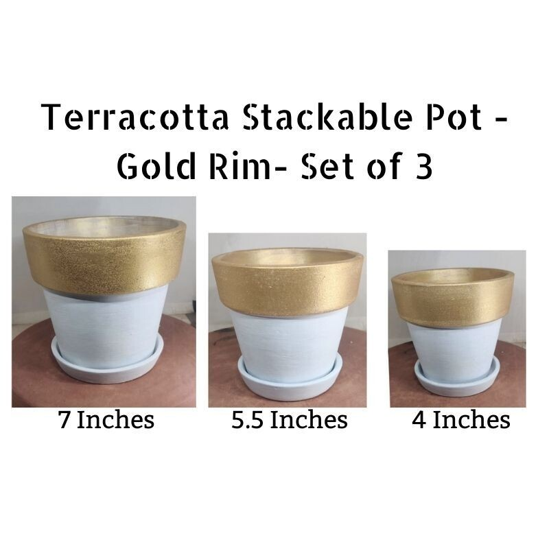 Coated - Stackable Terracotta Pot(Set of 3) - White with Gold Rim