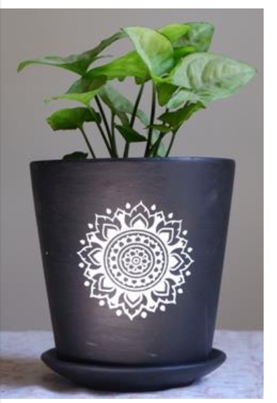 Terracotta - Black Printed Series - 6 Inch V Pot with Saucer