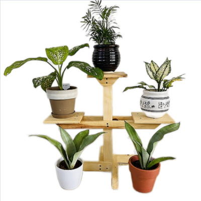 3 Compartment Wooden stand | Multipurpose Stand | Square Base | Indoor Stand