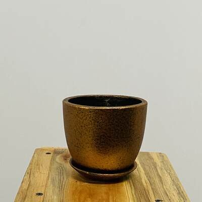 Terracotta Coated - Cup Pot - Copper Metallic with Sauce