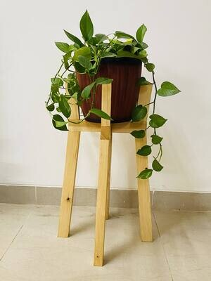 """Indoor Wood Stand long neck for 8"""" Planter"""