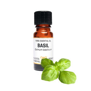 Basil - Ocimum basilicum.  10 ml Pure Essential Oil