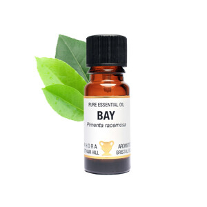 Bay - Laurus nobilis Oil  10 ml pure Essential Oil