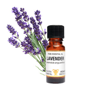 Lavender - Lavendula angustifolia 10 ml pure Essential Oil