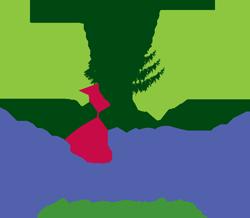 Beginner Summer Camps  $199 per week - Laytonsville 33117