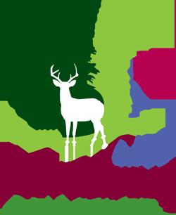 Northwest - Fall Tiger League 50007