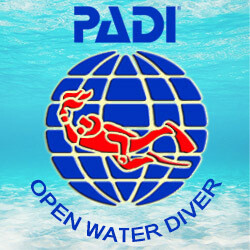 Open Water Diver cour individuel