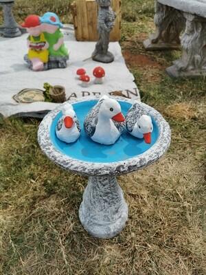 Ducks and Birdbath