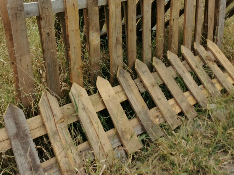 Picket Fence (3 Sizes)