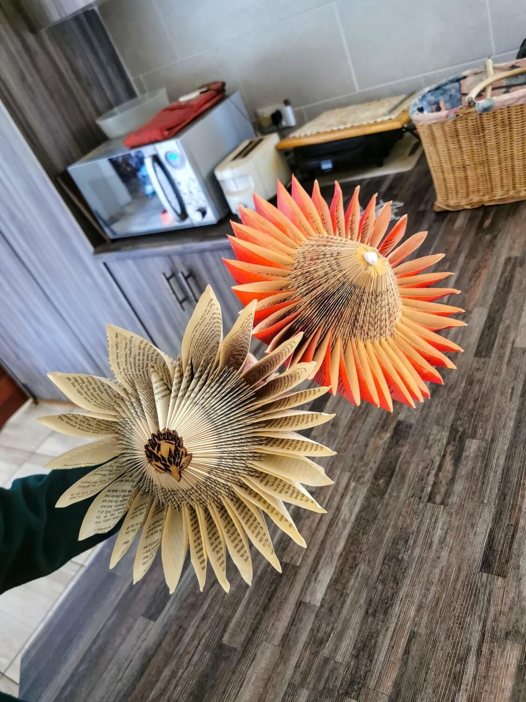 Protea Origami