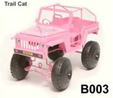 Trail Cat