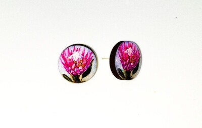 Dome stud earrings: Pink Protea