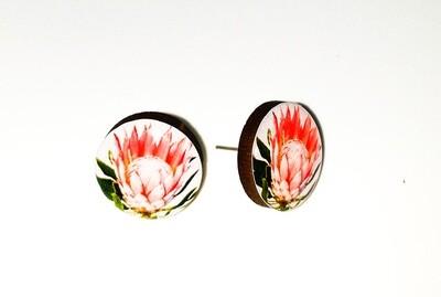 Dome stud earrings: Orange Protea