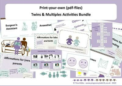 Twins & Multiples Activities Bundle (zip file containing pdf files)