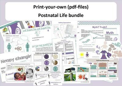 Postnatal Life Bundle (zip file containing pdf files)