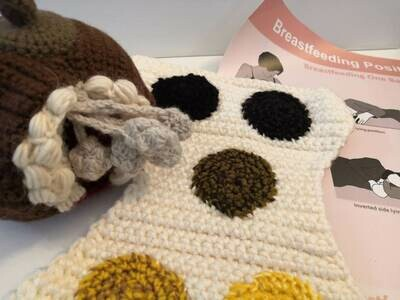 Postnatal Practitioner / Breastfeeding Support Practitioner Starter Kit
