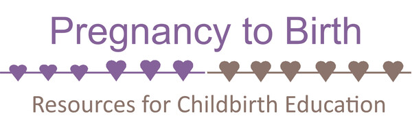 Pregnancy to Birth
