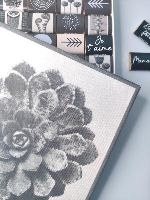 Chocolat & toile de tableau - modèle plante succulente