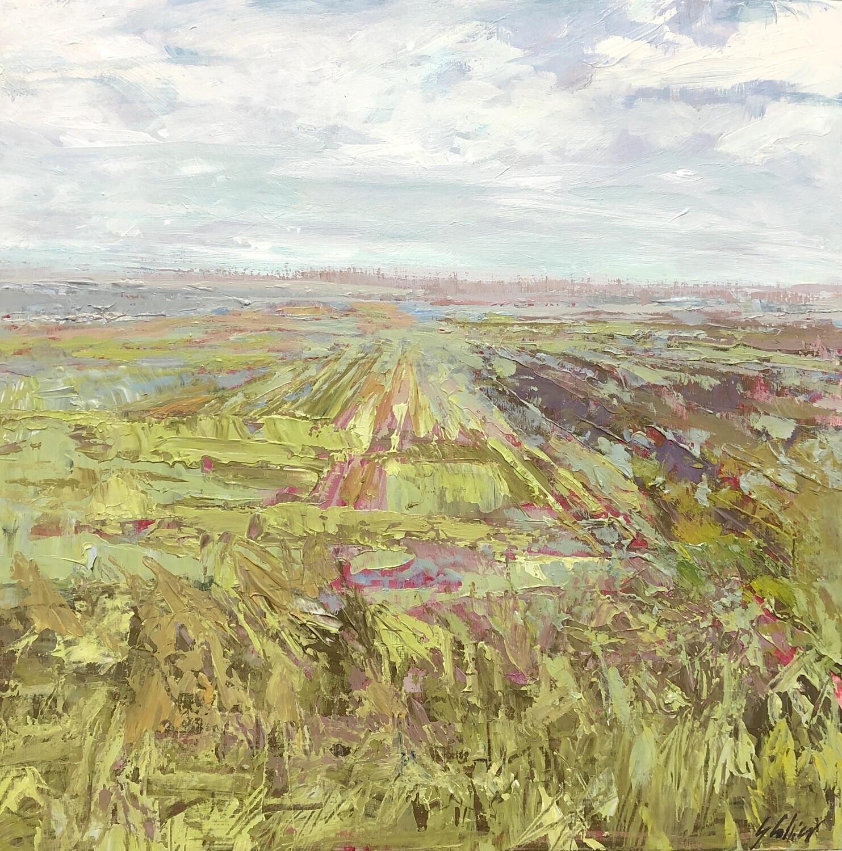 Creemore Fields, 12