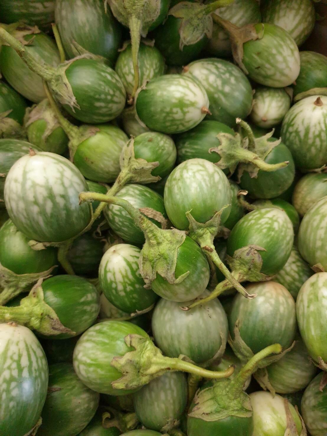Thai Eggplant 1 kg   มะเขือเปราะ แพค 1 kg