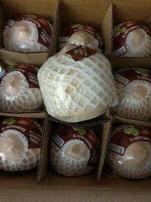 Young Coconut (1.2 kg) | มะพร้าวน้ำหอม (หนักประมาณ 1.2 kg/ลูก)