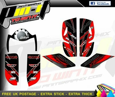 CAN AM DS650 STICKER KIT