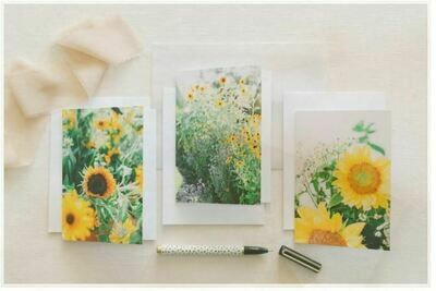 Locally Made Greeting Cards (set of 3), Farm Pickup