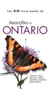 Butterflies Of Ontario
