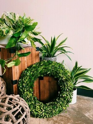 Boxwood - Country Manor Wreath - Round 20