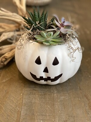 KIDS: HALLOWEEN PUMPKIN Workshop on 10/29/2020