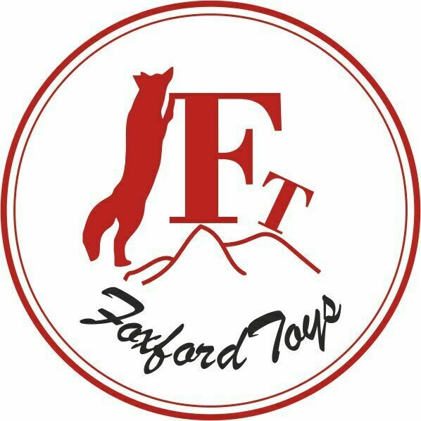 Foxford Toys