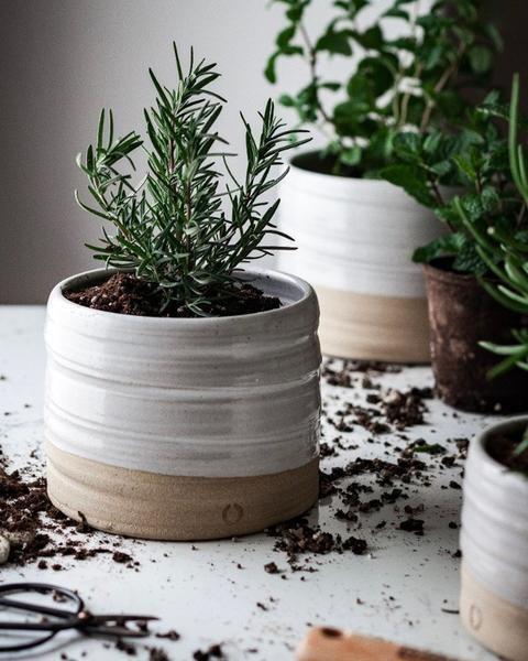 FARMHOUSE POTTERY Trunk Garden Pot, Large