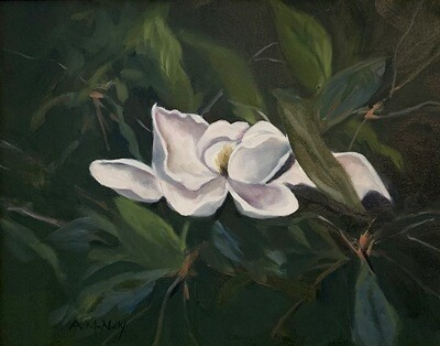 ANNE McNALLY Magnolia 3