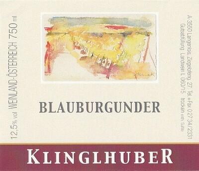 Blauburgunder