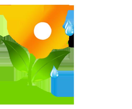 Spring Rain Balms Online Store