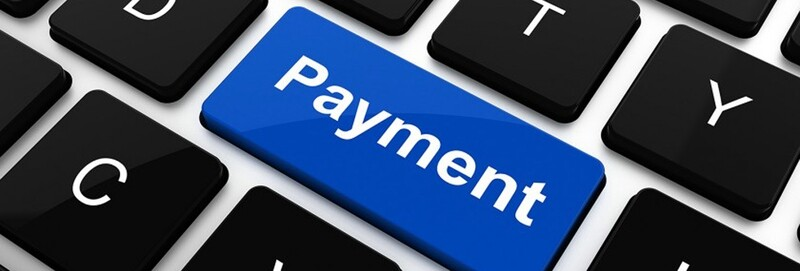 PAYMENTS FOR YOUR BIN CLEANS