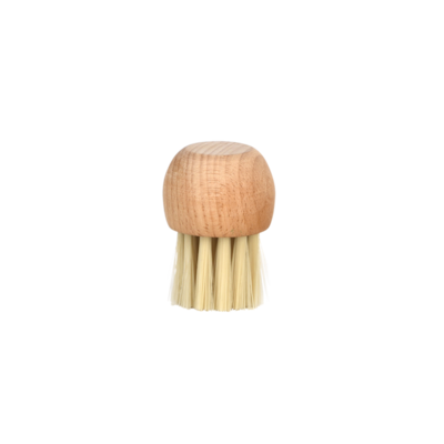 Paddenstoelen borsteltje