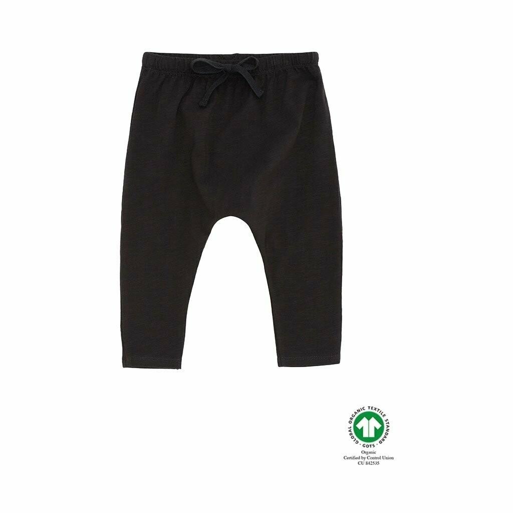 Hailey pants Jet Black