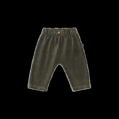 Baby Pants Moss Rib Velvet