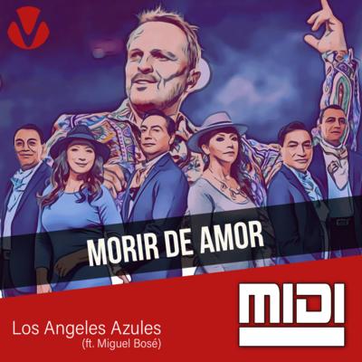 Morir De Amor (ft. Miguel Bose)