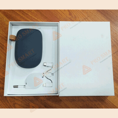 Gift Set (Power Bank and Data Cable)