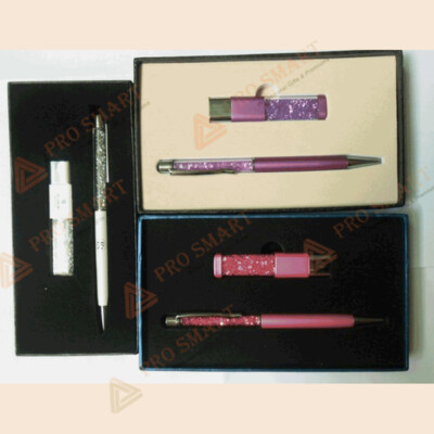 Gift Set (Ball pen and Memory Stick)